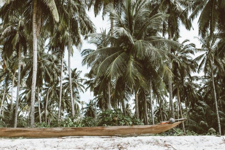 mentawai-6520